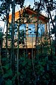 Baumhaus aus Holz auf 2 Meter hohen Stelzen umgeben von Erlen