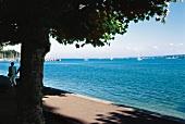 Blick über den Bodensee: Segelboote im Sonnenschein