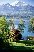 View of tree, grass, river and mountains in Worthersee, Austria