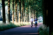 Two cyclists riding on country road surrounded with trees in North Brabant, Netherlands
