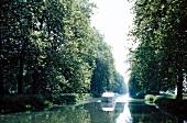 Boot auf dem Canal du Midi, umsäumt vom Bäumen.