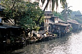 View of houses on stilts of river in Bangkok, Thailand