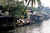 Blick auf Häuser auf Pfählen an einem Fluss in Bankok, Thailand
