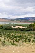 Blick auf einen See in der Weinregion Regaleali in Sizilien