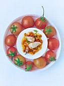 Gefüllte Calamaretti, Tomaten im Kreis auf einem Teller