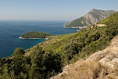 View of Dalmatian Adriatic coast and sea in Peljesac, Dalmatia, Croatia