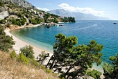 View of sea coast, beach and trees in Dalmatia, Croatia