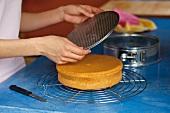 Backen, Biskuit: Biskuit auf Kuchengitter stürzen, abkühlen, Step