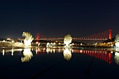 View of illuminated Bosphorus bridge at night in Istanbul, Turkey