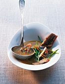 TBN Seafood - Aal Currysuppe