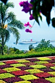 View of botanical garden with cruise ship in background, Madiera Island, Funchal, Portugal