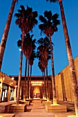 Los Angeles: Grauman¿s Egyptian Theatre, abends, beleuchtet, Palmen