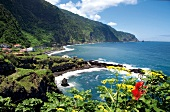 View of green rocky coastline and Atlantic ocean, Madeira, Portugal