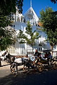 View of people travelling by horse drawn carriage and house at Buyukada, Istanbul, Turkey