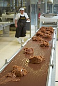 Chocolates on belt conveyer in chocolate factory, Styria