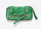 Mini-Tasche in Grasgrün mit goldenen Details, Reißverschluss