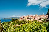 View of Capoliveri overlooking Mediterranean sea on Elba Island, Italy