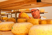 Close-up of man checking cheese on the shelf