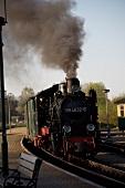 Narrow gauge railway at Rugen, Germany