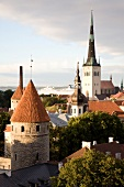 Altstadt von Tallinn, Stadtmauer , Kirchtürme, Hafen