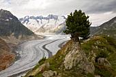 View of Aletsch Glacier in Valais, Switzerland