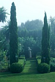 Spanish garden with two cypress trees and fog