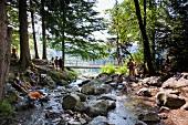 Schwarzwald: Todtnau, Stübenbach, Wald, Touristen, sommerlich