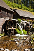 Black Forest with two water wheels in hexenloch mill