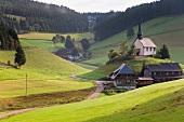 Schwarzwald: Katzensteig, Hügel, Dorfkirche, Wälder, sommerlich