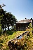 Schwarzwald: Todtnauberg, Hütte, abgeschieden, sommerlich