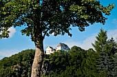 Sachsen: Burg Wolkenstein, Bäume grün, Himmel blau, sommerlich