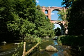View of Elstertalbrucke Bach and river surrounded with greenery, Saxony, Germany