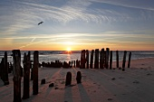 View of Old Groyne at sunset on Sylt Island, Schleswig-Holstein, Germany