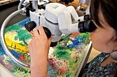 Woman looking at paintings through microscope in The Museum of Modern Art, New York, USA