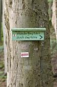 Bayern, Franken, Fränkische Schweiz, Naturpark, Reise