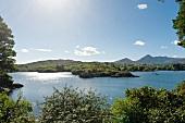 Irland: Blick auf Insel Ilnacullin, blauer Himmel