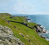 View of green rocky coast of Atlantic in Inishbofin, Ireland