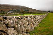 View of stone wall and hills in County Down, Ireland