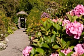 View of Italian flowers and garden gate in Ilnacullin, Ireland