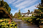 View of Mount Usher garden and mansion near water in Ashford, Ireland