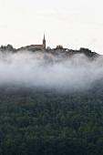 Dilsberg: Stadt bei Morgennebel, idyllisch