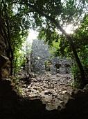 Ruined city of Olympus in jungle, Lycia, Antalya, Turkey