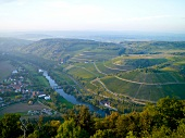 Blick auf die Luitpoldbrücke bei Oberhausen, Nahe, Weinanbaugebiet