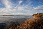 Ostseeküste: Landschaft, Wasser, Windmühle, herbstlich.