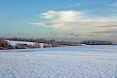 Ostseeküste: Angeln, Knicklandschaft verschneit.