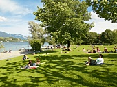 People relaxing in meadow at Ufschotti, Lucerne, Switzerland
