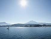 Panoramic view of sail boats in Lake Lucerne, Alps, Lucerne, Switzerland