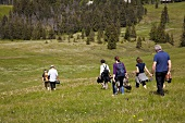 Hiking group walking in meadow, Entlebuch, Lucerne, Switzerland