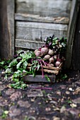 Beetroot in a wooden crate