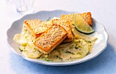 Anti-Krebsernährung: Kohlrabigemüse mit Sesam-Tofu